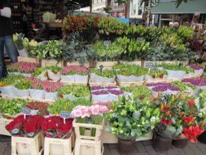 Őszi Kertészeti Napok 2018