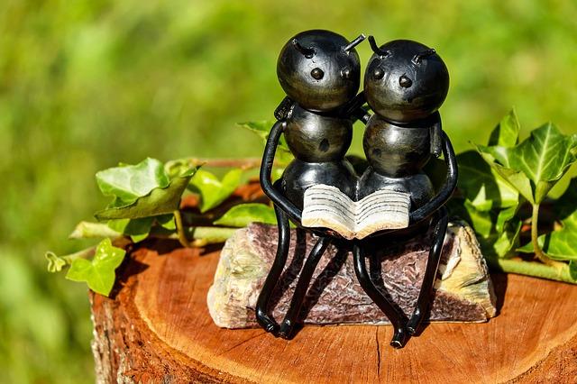 A tücsök és a hangya - mese kicsit másképp