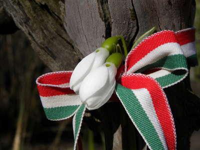 magyar kokárda színei